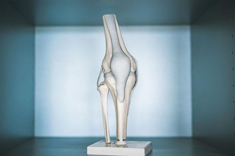 Was macht ein Orthopäde?